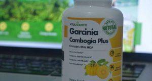 Right Garcinia Cambogia Dosage