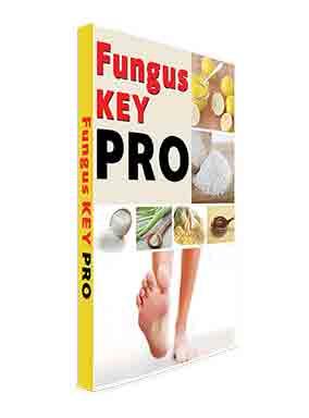 fungus key pro pdf